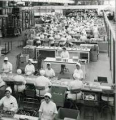 Laboratoires MSD-Chibret